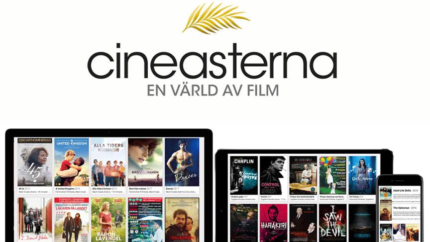 En bild från Cineasterna.com