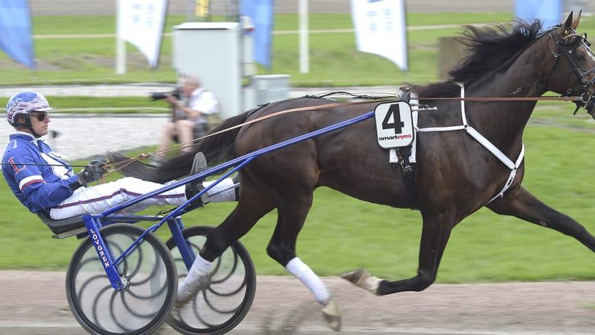 Racing Mange och Joakim Lövgren har kvalat in till Elitloppet på Solvalla. Foto: TR Bild
