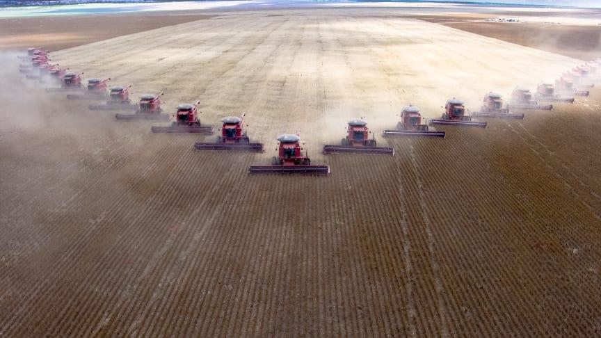 Brasilien oplever i disse år en enorm afskovning, der foregår for at gøre plads til at udvidde landbruget, ikke mindst til sojaproduktion