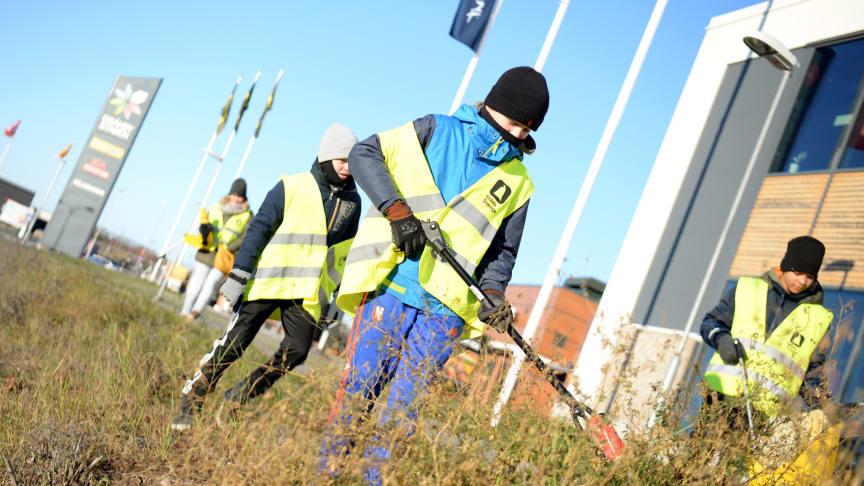 Nu städar lokala fotbollsungdomar i Gränbystaden igen. IF VP P06, på bilden, har tidigare haft uppdraget. Foto: Josefin Warg