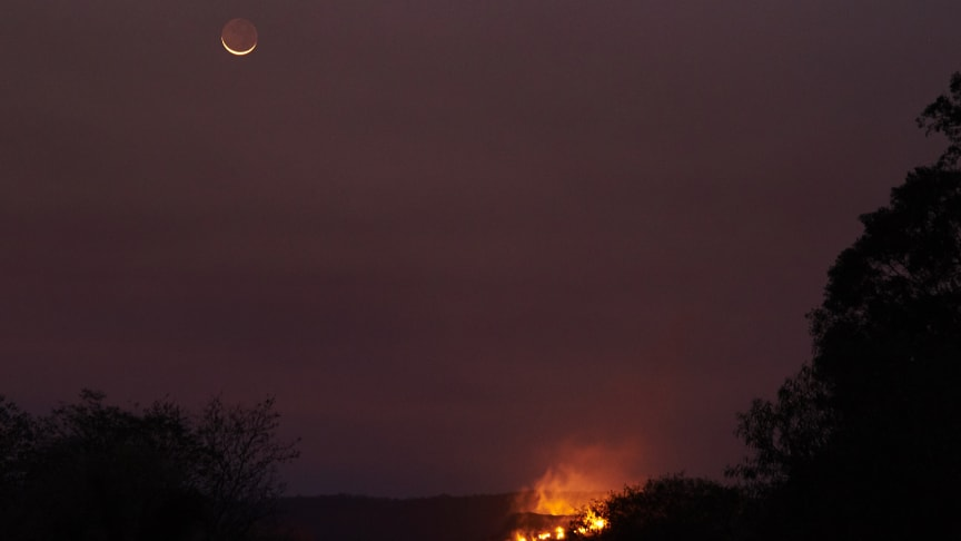 Ilden fra skovbrand i Chiquitania i Bolivia lyser nattehimlen op. Både i Sydamerika, Sydøstasien og Afrika raser skovbrande stadig. Foto: Juan Gabriel Estellano