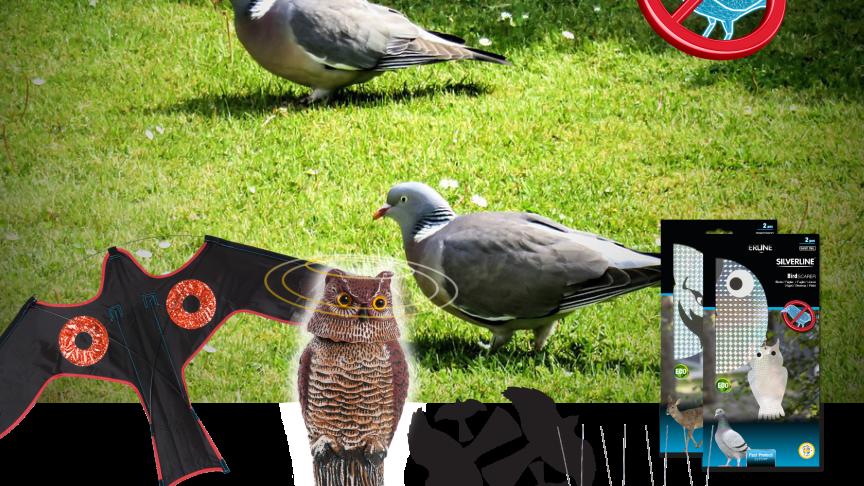Håll nedskräpande fåglar borta!