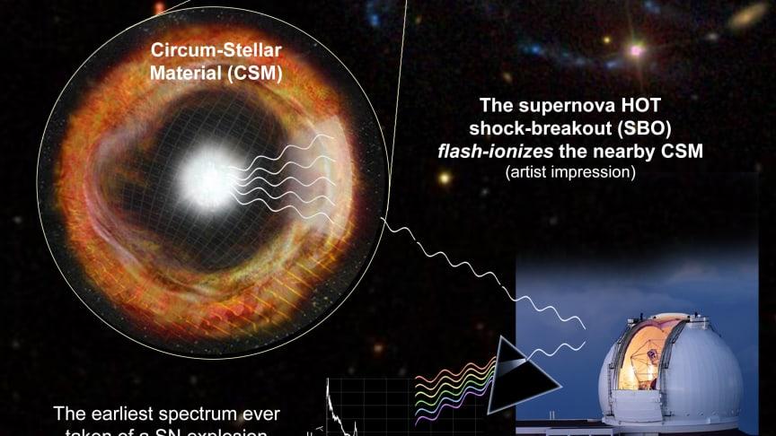 Supernovan SN 2013fs exploderade i en spiralarm i galaxen NGC 7610. Ljuset från supernovan lyser upp den omkringliggande gasen som stjärnan tidigare kastat ut, och signalen kunde rekordsnabbt fångas upp av Keck-teleskopet på Hawaii. Bild: Ofer Yaron.
