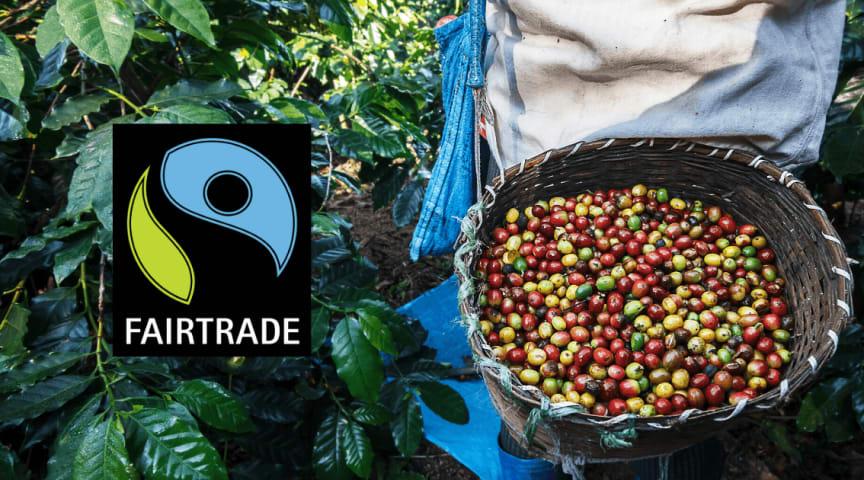 Fairtrade-kaffe