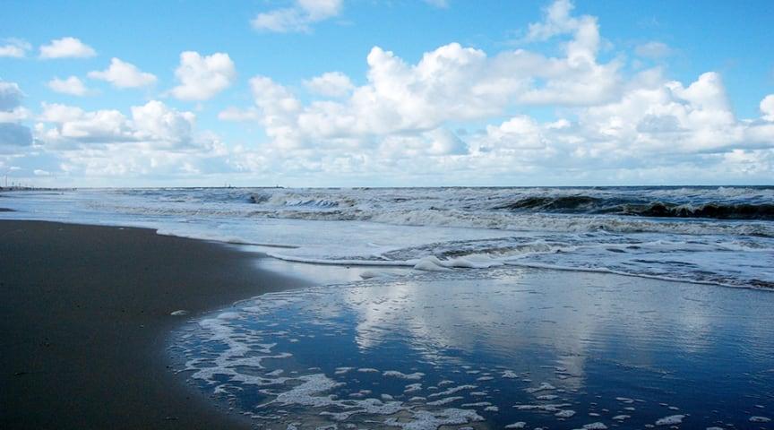 Ny beräkning av källorna till övergödning i Östersjön och Västerhavet