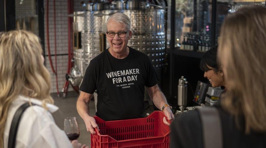 Djupdyk i vinets värld