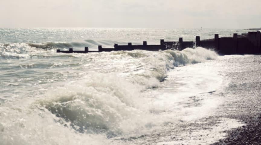 Dålig havsmiljö dyrt för samhället