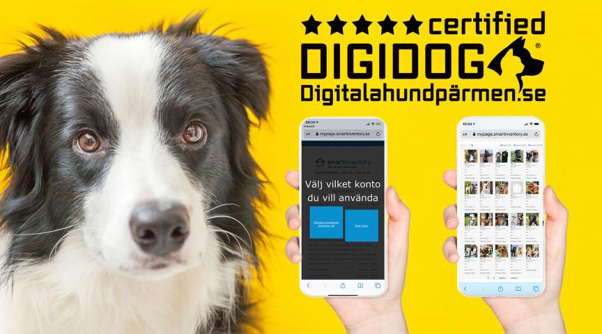 Trygg digital tjänst för hunddagis, hundpensionat och omplaceringsverksamheter