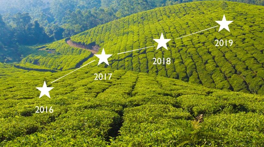 Vår försäljning av ekologiska teer ökade även under 2019!