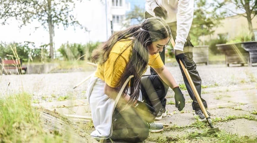 Unga för orten kallas den trygghetssatsning som genomförs i form av sommarjobb under sommaren i tre områden i Huddinge kommun