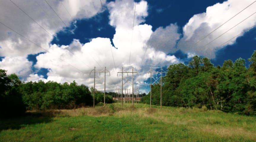 Norgesnett investerer i ny skogsryddingsløsning
