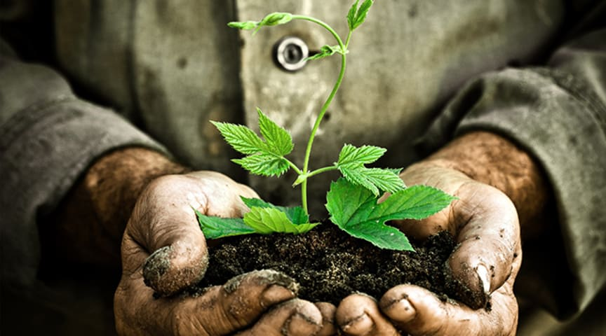EM® Trädgårdslådan - Allt du behöver för din trädgård under en säsong.