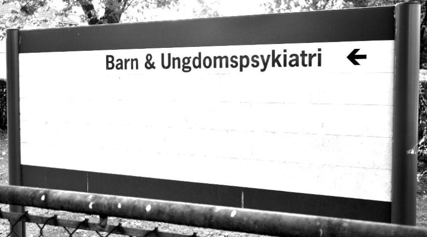 Sverigedemokraterna ställer sig inte bakom vårdval inom BUP