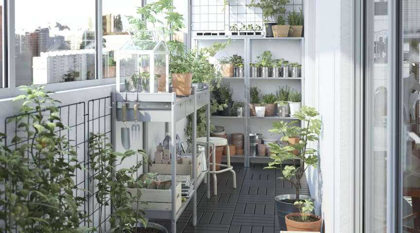 Spokesperson Spotlight with Hege Sæbjørnsen: Get Growing with IKEA