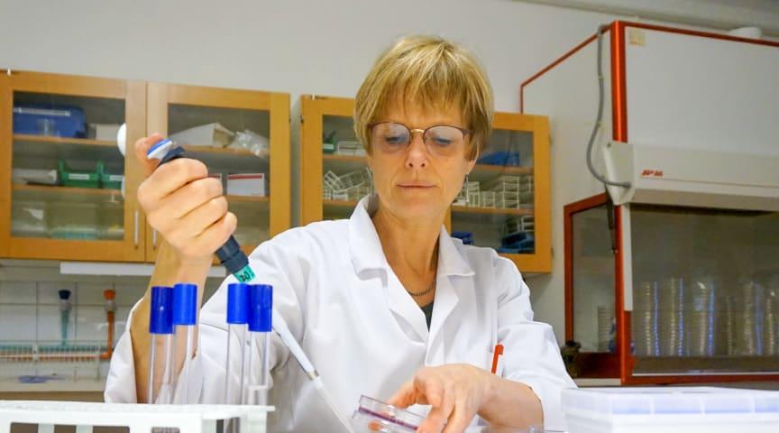 Mikrobiolog Stina-Mina Ehn Börjesson på sin hemmaplan, i labbet längst upp i hus 20 på Högskolan Kristianstad. På fredag åker hon dock till Göteborg för att försvara sin avhandling om hur bakterier sprids från människa till djur.