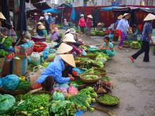 A Vietnam Adventure