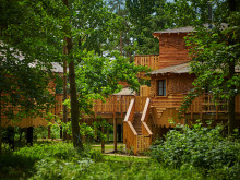 Treehouse Exterior in Forest June 2016 EF 20