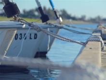 Båt båtar segling