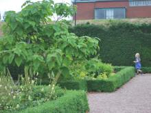 Pågatåget tar dig till 12 000 kvadratmeter ekoträdgård