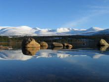 Business booming in Cairngorms