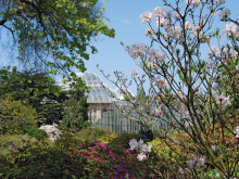 Garden tourism set to grow