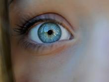 En donator kan ge två synen tillbaka