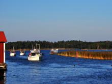 Pressinbjudan inför årets stora fiskeutmaning! EM i Insjötrollning 2016 – Kållandsö Vänern