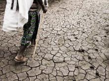 Klimaaftale på plads: Det er nu arbejdet begynder
