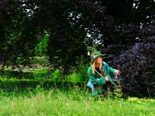 Bokskogens dag - en fullspäckad dag för hela familjen