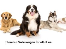 Volkswagen leads the way with new #woofwagen range advertising campaign