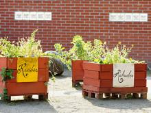 Örebro blir en mer ätbar stad
