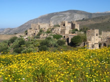 Spring flowers of the Peloponnese