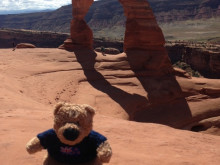 ​Travels with Rambo the Ted