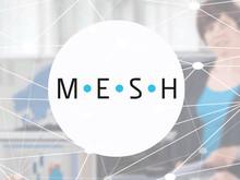 Powel Mesh logo