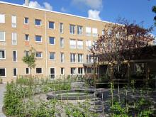 Nytt demensboende i Norrtälje