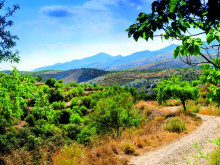 A walk on the wild side in the Alpujarras
