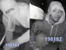 Appeal following Mitcham burglary
