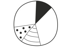 Ökad volym och geografisk spridning bakom Riksbyggens starka resultat