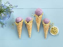 Hjemmelaget is med sesongens friske bær