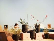 Yoga über Marrakesch's Dächern