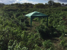 Suspected cannabis farm uncovered