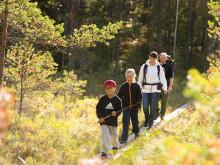 Ny rapport visar att varannan länsinvånare har vandrat på Berglagsleden