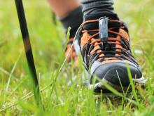 Sportlich unterwegs: Bayernwerk eröffnet Aktiv- und Gesundheitspark im Oberpfälzer Seenland - kommunales Angebot für Sportler und Touristen
