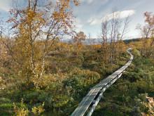 Nu kan du ta del av Kungsleden och 20 nya sevärdheter i Google Maps Streetview