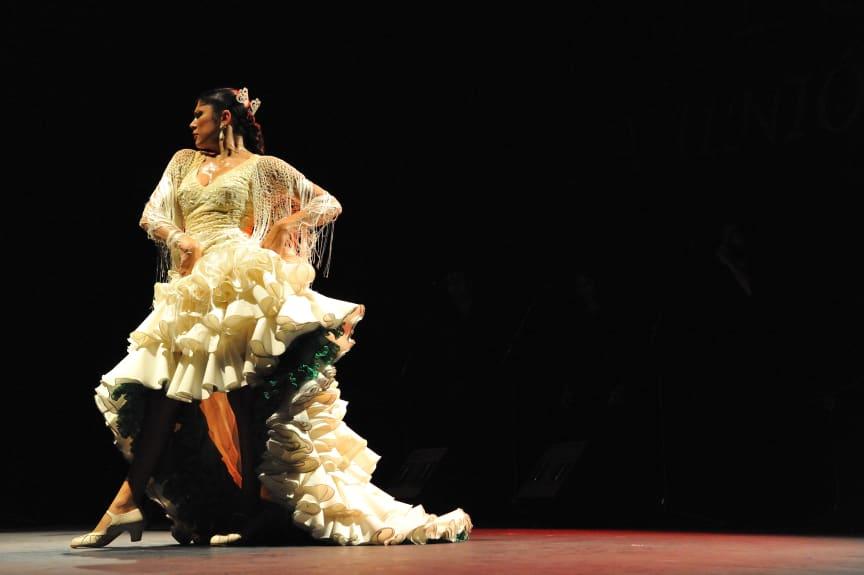 Flamenco Passion – Flamenco från Sevilla