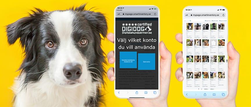 DIGIDOG Certified Delat konto för hundverksamheter