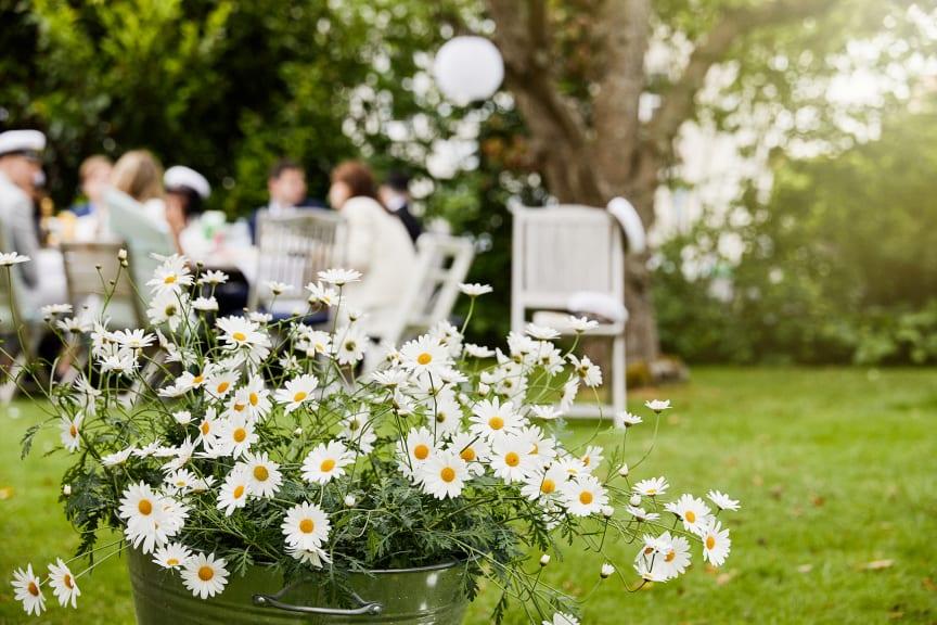 Sommarfest med Sofieromargeriter_web