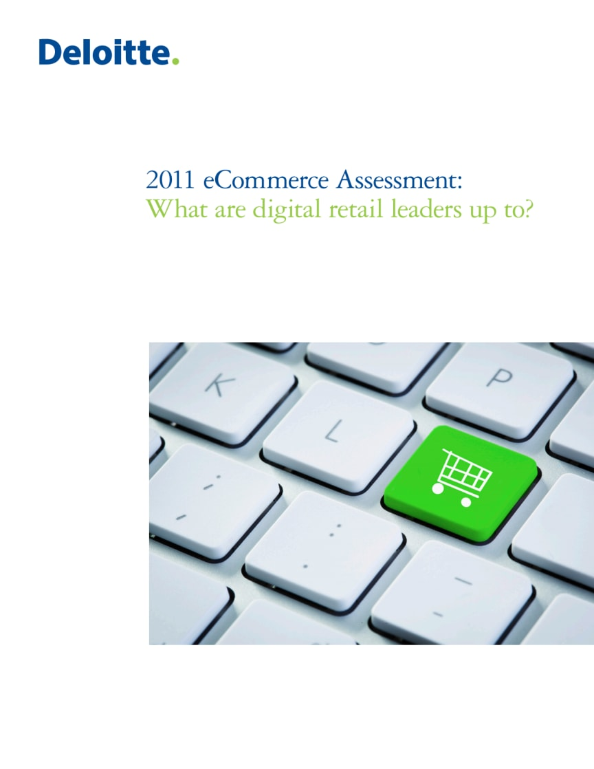 2011 eCommerce Assessment