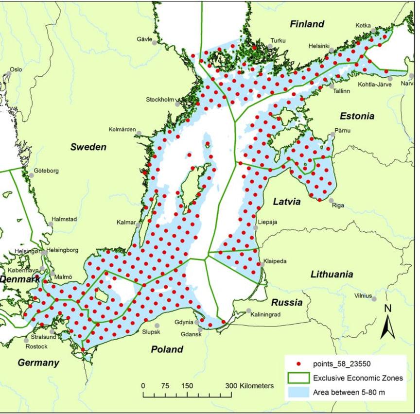 Hur Skyddar Vi Tumlare I Ostersjon Hav Bjuder In Till Workshop