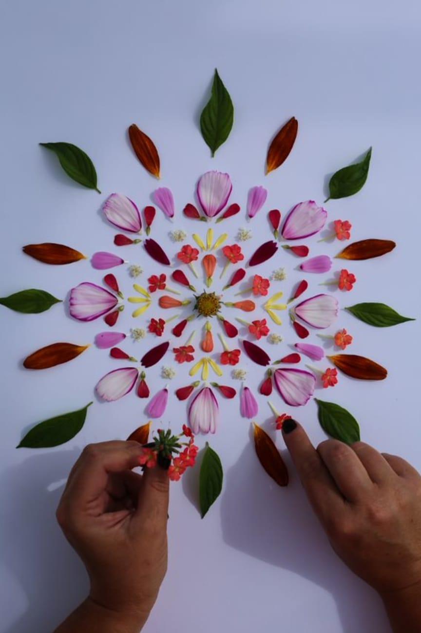 Blomsterpill med Hanna Wendelbo